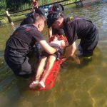 Ćwiczenia doskonalące działania ratownicze