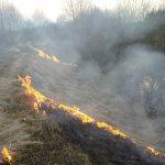 Pożar w Babsku. Stop wiosennemu wypalaniu traw!