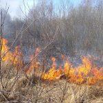 Pożar w Grabniaku